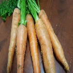 Fresh Gourmet & Std Carrots / kg
